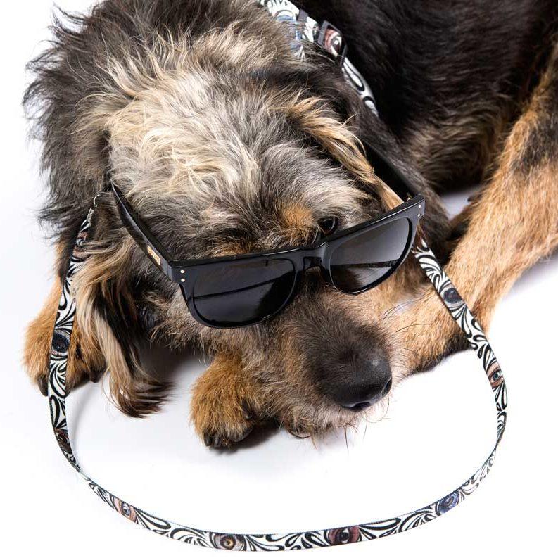 Cachorro usando óculos com Cordão Cuscoloko